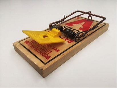 Picture of Victor Professional Rat Trap